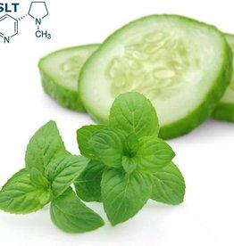 Cucumber Mint | 30ml | Salt