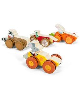 Le Toy Van Woodland Race