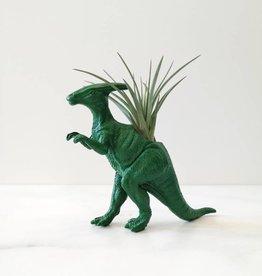 Dinature Dinosaure Plante - Petit - Parasorolofus vert