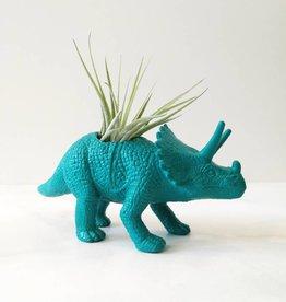 Dinature Dinosaure Plante - Petit - Tricératop turquoise foncé