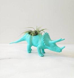 Dinature Dinosaure Plante - Petit - Tricératop turquoise