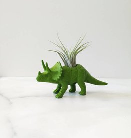 Dinature Dinosaure Plante - Petit - Tricératop vert