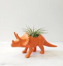 Dinature Dinosaure Plante - Petit - Tricératop orange