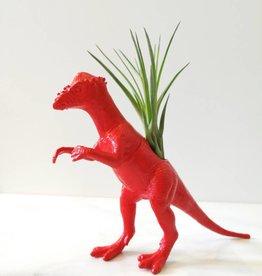 Dinature Dinosaure Plante - Petit - Stygimoloch rouge