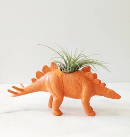 Dinature Dinosaure Plante - Petit - Stegosaure orange