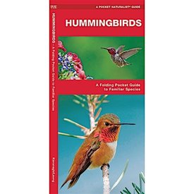 A Pocket Naturalist Guide - Hummingbirds