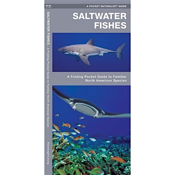 A Pocket Naturalist Guide - Saltwater Fishes
