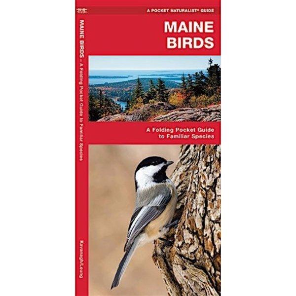A Pocket Naturalist Guide - Maine Birds
