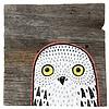 Mermaid Meadow Barn Board Owl - 4x4