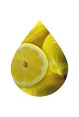 Fused Whole Fruit Lemon
