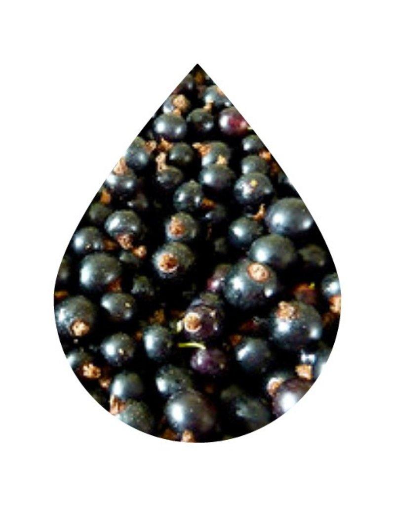 Black Currant Dark Balsamic