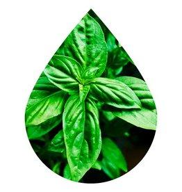 Basil Oilve Oil