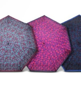My Walit Boxed Umbrella - Assorted
