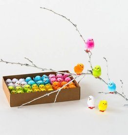 Multi-Colored Baby Chicks - Assorted