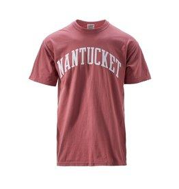 Comfort Colors CC Mens Tee Scr Nantucket Arc